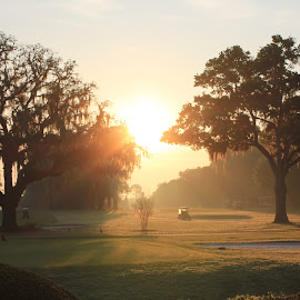 Morning Tee Time by Sharon Bull - Sports & Fitness Golf ( relax, tranquil, relaxing, tranquility )