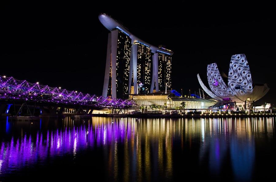 Marina Bay Waterfront by Yi Xuan Lee - City,  Street & Park  Skylines ( lights, purple, night, waterfront, marina bay )