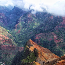 Wiamea Canyon Hawaii by Lorna Littrell - Landscapes Mountains & Hills ( clouds, mountains, nature, canyon, landscape )