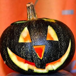 by Stanisław Sawin - Public Holidays Halloween