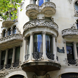 Barcelona by Gil Reis - Buildings & Architecture Architectural Detail ( batcelona, details, street, art, buildings, places, city )
