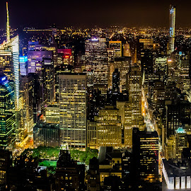 Night Skyline by Mark Ritter - City,  Street & Park  Night ( lights, midtown, empire state building, night, nyc, new york city )