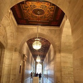 New York public library  by Anu Sehgal - Buildings & Architecture Public & Historical