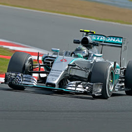 Rosberg by Percy Shelley - Sports & Fitness Motorsports ( mecedes, racing, grand prix, f1, silverstone,  )