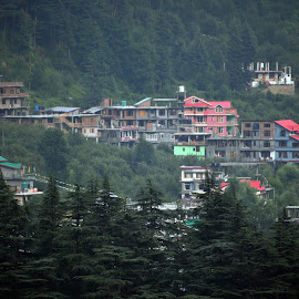 Manali by Shyam Akirala - City,  Street & Park  Neighborhoods ( greenery, city, buildings, manali, colorful )