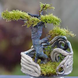 Raku bonsai by Luc Raymond - Artistic Objects Other Objects