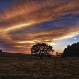 Alien Sunset . by Jim Dawson - Novices Only Landscapes ( farm, clouds, tree, barn, colors, sunset, landscape )