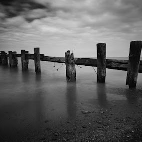 A Dock Long Since by Elvis Dorencec - Landscapes Waterscapes ( water, black and white, long exposure, beach, dock )