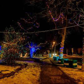 by Joseph Law - Public Holidays Christmas