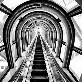 Escalators by Pravine Chester - Black & White Buildings & Architecture ( photograph, monochrome, black and white, architecture, escalator )