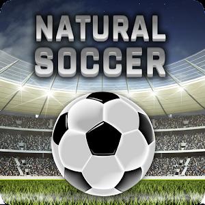Natural Soccer ⚽ Fun Arcade Football Game For PC