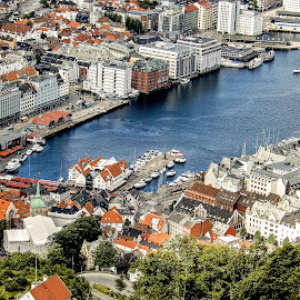 Over the Bryggen by Richard Michael Lingo - City,  Street & Park  Vistas ( city, bryggen, norway, vista, bergen )