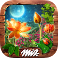 Hidden Objects Mystery Garden APK Descargar