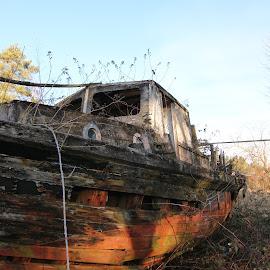 by Michael Almond - Transportation Boats