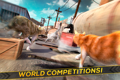 3D Cat Simulator Game For - screenshot