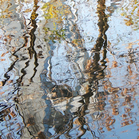 Water reflection by Irena Čučković - Nature Up Close Water