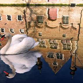 Reflections of Bruges by Peter Kennett - City,  Street & Park  Street Scenes ( tonemapped )