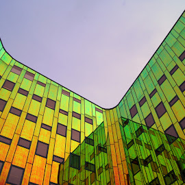 Hanze Staede by Anita Berghoef - Buildings & Architecture Office Buildings & Hotels ( orange, reflection, building, green, colors, the netherlands, windows, yellow, office building, architecture, public, looking up, deventer )