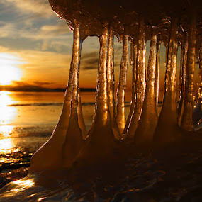 Icestalactites by Peter Samuelsson - Landscapes Waterscapes ( clouds, sweden, winter, halland, sunset, ice, beach, coast, icestalactites,  )