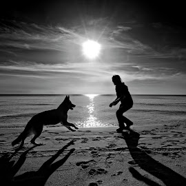 Lost love by Joseph Balson - Black & White Portraits & People ( sunsrise, black and white, shadow, beach, dog, man )
