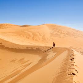 Desert Path by Omar Dakhane - Landscapes Deserts ( walking, north africa, dunes, desert, arab, tuareg, sahara desert, travel, landscape, nature, path, algeria, sahara, africa, alone, man )