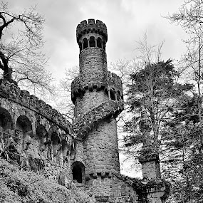 The Tower by Julio Cardoso - Buildings & Architecture Public & Historical ( tower, quinta da regaleira, sintra, torre, portugal )