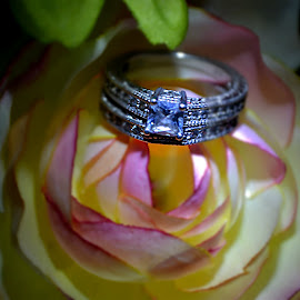 Ring on a rose by Crystal Bailey - Artistic Objects Jewelry