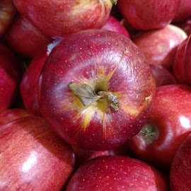 by Jolene Schack Dommer - Food & Drink Fruits & Vegetables