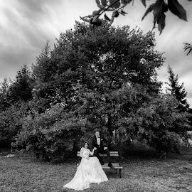Bride & Groom by Marko Stanisic - Wedding Bride & Groom ( srbija, love, black and white, krusevac, wedding, couple, bride, photo, groom, photography )