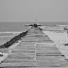 The Way towards mohana by Sankha Ghose - Landscapes Beaches ( black and white, b and w, landscape, b&w, monotone, mono-tone )