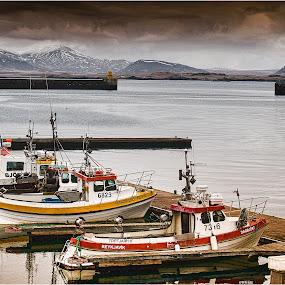 Reykjavik Harbour by Stephen Hooton - Uncategorized All Uncategorized ( iceland, boats, places )