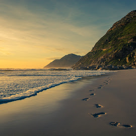 Footsteps in the sand by Rob Mousley - Landscapes Beaches ( sand, noordhoek beach, sunset, beach, nikon, landscape, footsteps )