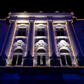 lekarna by Tibor Pirnat - Buildings & Architecture Other Exteriors ( lights, building, christmas, night, historical, city at night, street at night, park at night, nightlife, night life, nighttime in the city )