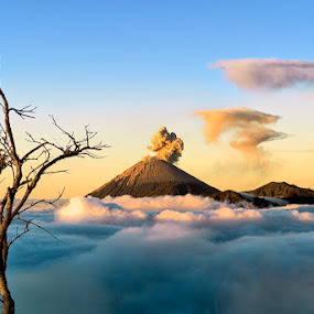 Semeru Mount from Bromo Mount  by Hartono Hosea - Landscapes Mountains & Hills