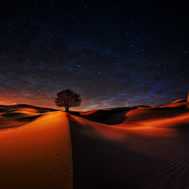 The sound of silent by Giuseppe  Castro - Landscapes Deserts ( desert, tree, low light, long exposure, landscape )