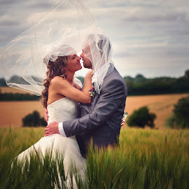 Wedding  by Adrian Dawes - Wedding Bride & Groom ( field, © adrian dawes photography, bride and groom, bride, groom )