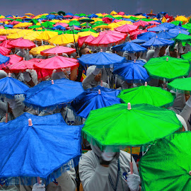 Umbrellas by Saiful Gillerfoto - Artistic Objects Other Objects ( umbrellas, malaysia, colorfull, design, independenceday )
