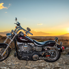 Dyna Sunrise by Javier Ramirez - Transportation Motorcycles ( rancho cucamonga, harley davidson, dyna, motorcycle, sunrise,  )