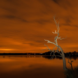 Night lake by Štěpán Florus - Landscapes Travel ( water, clouds, sky, nature, tree, summer, cloudy, lake, night )