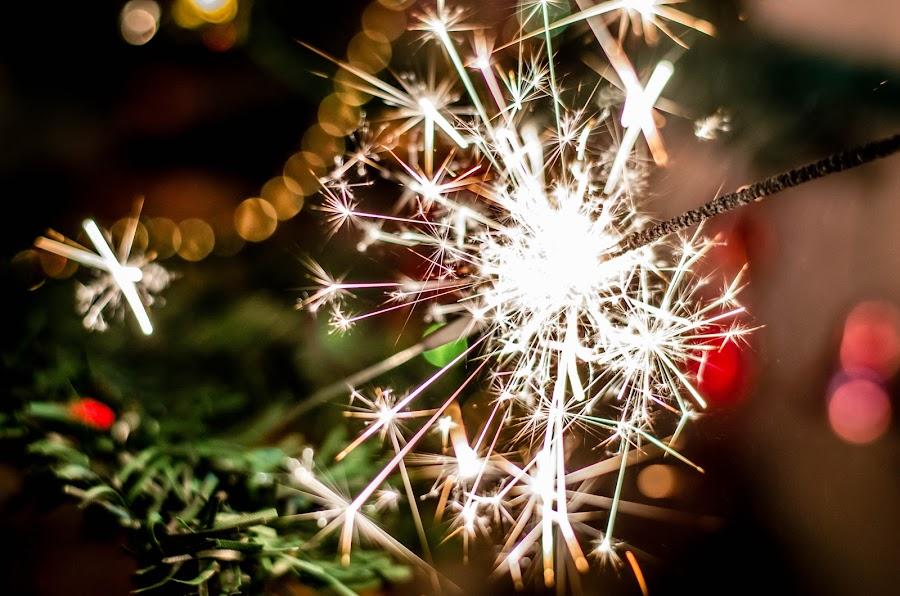 Sparkler by Péter Nagy - Public Holidays Christmas ( sparkler, xmas, christmas, holidays )