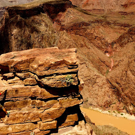 Grand Canyon by Harris Kalofonos - Sports & Fitness Climbing