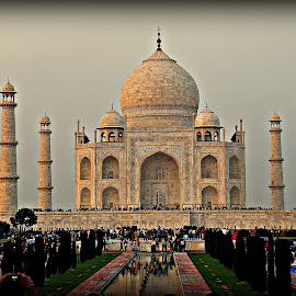 The Mausoleum. by Soham Chakraborty - Buildings & Architecture Public & Historical ( marble, tomb, mughals, taj mahal, monument, historical )