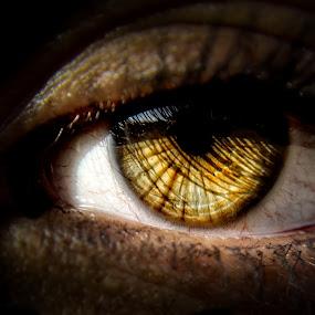 soulful by Tanya Popove - People Body Parts ( macro, shadow, amber, intense, eye )