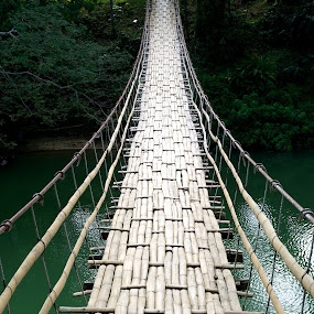 Monkey bridge by Darius Apanavicius - Buildings & Architecture Bridges & Suspended Structures ( water, bamboo, forest, travel, bridge, philippines, pwcbridges, river,  )