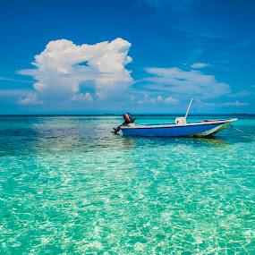 Isla Múcura by Gato Perro Tronchatoro Krois - Novices Only Landscapes ( bahía, bay, boat, isla, island )