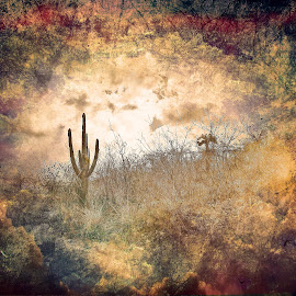 Cactus by Al Duke - Digital Art Places ( cactus )