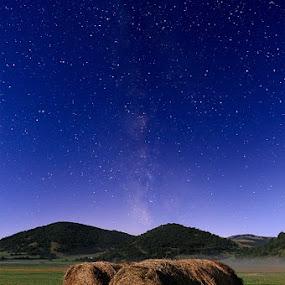 milky by Fabio Ponzi - Landscapes Prairies, Meadows & Fields ( sky, grass, star, night, full moon )