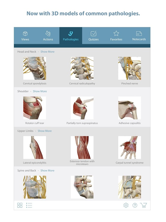 Muscle Premium - 3D Guide Screenshot 6