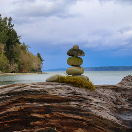 by Kathy Suttles - Artistic Objects Still Life ( washington, suttleimpressions, nisqually valley, wave washed log, rock cairn )