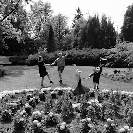 Dancing with Frogs by Eryn Shepherd - People Couples ( dancing, novice, black and white, couple, mobile )